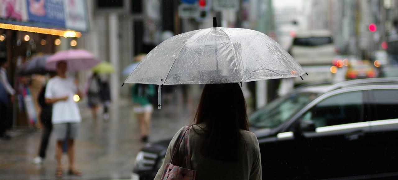 Paraplyer i regnvejr